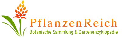 PflanzenReich - Botanische Sammlung und Gartenenzyklopädie
