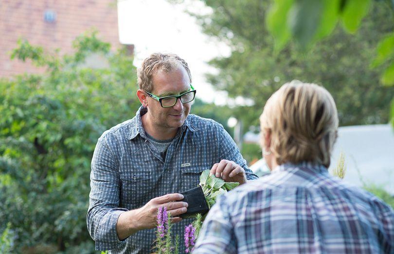 Bild Pflanzenverkauf für Kräuter, Stauden und Besonderes im Müglitztal